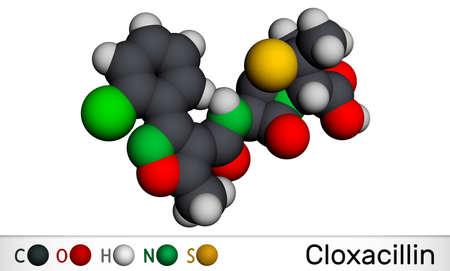 Cloxacillin molecule. It is antibacterial drug, semi-synthetic beta-lactamase resistant penicillin antibiotic. Molecular model. 3D rendering. 3D illustration