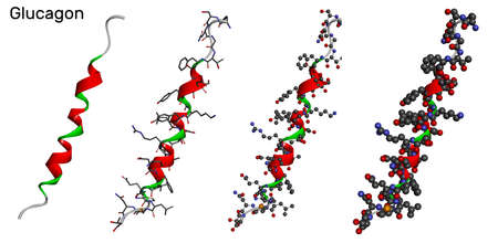 Glucagon molecule in different models on white background. It is 29 amino acid peptide hormone, is used to treat low blood sugar. 3D rendering. 3D illustration Banque d'images