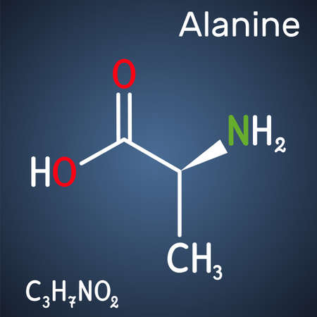 Alanine, L-alanine, Ala, A molecule. It is non-essential amino acid. Structural chemical formula on the dark blue background. Vector illustration