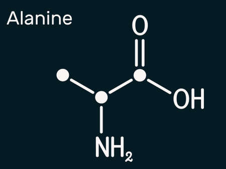 Alanine, L-alanine, Ala, A molecule. It is non-essential amino acid. Structural chemical formula. Skeletal chemical formula on the dark blue background. Illustration