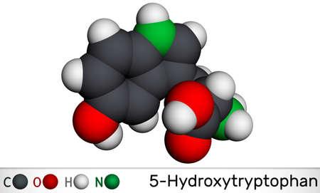 5-Hydroxytryptophan, 5-HTP, hydroxytryptophan, oxitriptan molecule. It is naturally occurring amino acid, tryptophan derivative. Molecular model. 3D rendering. 3D illustration Banque d'images