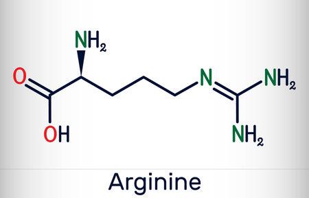 Arginine, Arg, L-arginine, R essential amino acid molecule, it is used in the biosynthesis of proteins. Skeletal chemical formula. Vector illustration