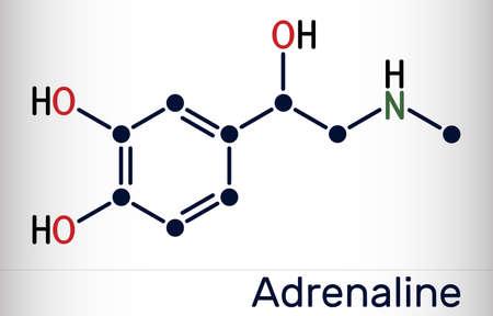 Adrenaline, epinephrine molecule. It is a hormone, neurotransmitter and medication. Skeletal chemical formula. Vector illustration