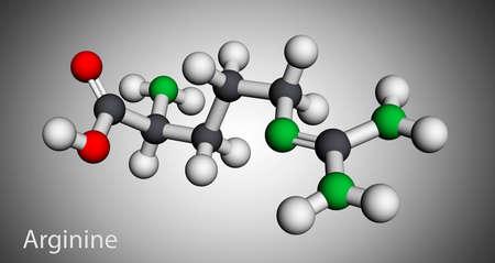 Arginine, L-arginine, Arg, R essential amino acid molecule, it is used in the biosynthesis of proteins. Molecular model. 3D rendering. 3D illustration Banque d'images
