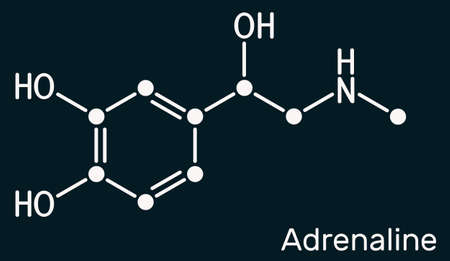 Adrenaline, epinephrine molecule. It is hormone, neurotransmitter, medication. Used as drug due to its various important functions. Skeletal chemical formula on the dark blue background. Illustration
