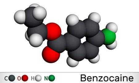 Benzocaine molecule. It is local anesthetic. Molecular model. 3D rendering. 3D illustration