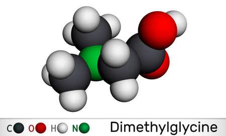 Dimethylglycine, DMG, N, N-dimethylglycine molecule. It is derivative of the amino acid glycine. Molecular model. 3D rendering. 3D illustration