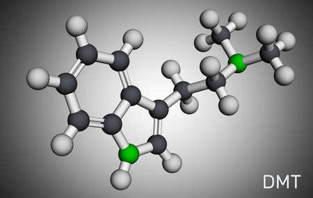 N, N-Dimethyltryptamine, dimethyltryptamine, DMT molecule. It is tryptamine alkaloid, indoleamine derivative, serotonergic hallucinogen. Molecular model. 3D rendering. 3D illustration