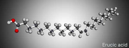 Erucic acid molecule. It is docosenoic acid, monounsaturated omega-9 fatty acid. Molecular model. 3D rendering. 3D illustration