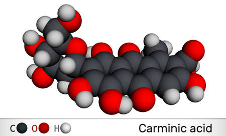 Carminic acid molecule. It is сoloring matter, red glucosidal hydroxyanthrapurin. It is used in foods, pharmaceuticals. Molecular model. 3D rendering. 3D illustration Imagens