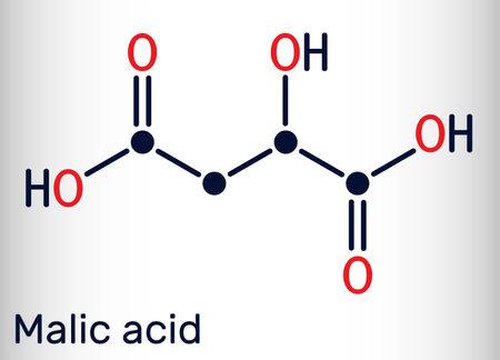 Malic acid C4H6O5 molecule, is dicarboxylic acid. Skeletal chemical formula. Vector illustration