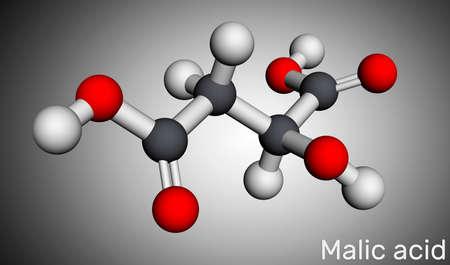 Malic acid C4H6O5 molecule, is dicarboxylic acid. Molecular model. 3D rendering. 3D illustration Imagens