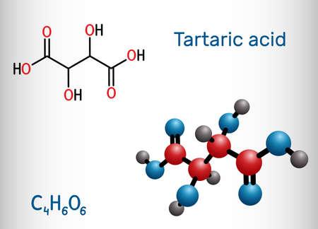 Tartaric acid, dextrotartaric, levotartaric acid molecule. It is antioxidant E334, occurs in grapes, bananas, tamarinds, citrus. Structural chemical formula and molecule model. Vector illustration