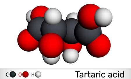 Tartaric acid, dextrotartaric, levotartaric acid molecule. It is antioxidant E334, occurs in grapes, bananas, tamarinds, citrus. Molecular model. 3D rendering. 3D illustration Imagens
