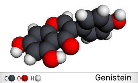 Genistein isoflavone molecule. It is angiogenesis inhibitor, phytoestrogen, isoflavonoid derived from soy products. It has antihelmintic activity. Molecular model. 3D rendering. 3D illustration