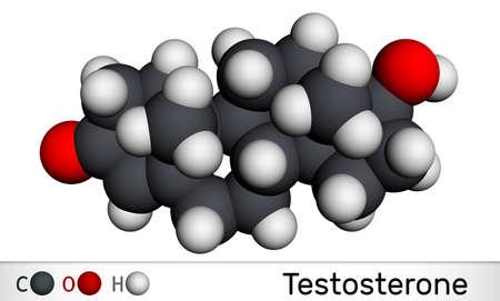 Testosterone, testosteron molecule. It is androgenic steroid sex hormone. Molecular model. 3D rendering. 3D illustration