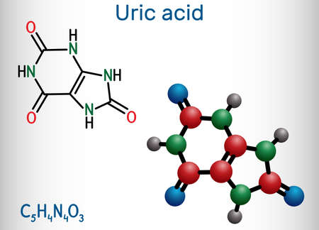 Uric acid molecule. It is heterocyclic compound, crystalline product of protein metabolism, found in the blood and urine. Structural chemical formula and molecule model. Vector illustration