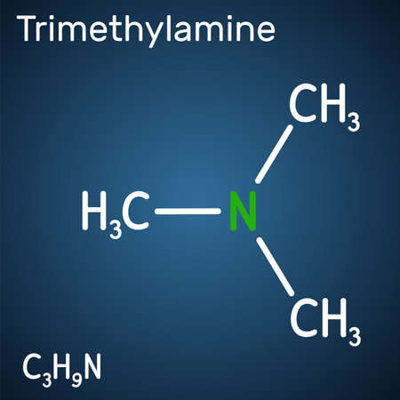 Trimethylamine, TMA molecule. It is amine, methylamine, synthesized by microbial enzymes in gut with involvement of dietary components. Structural chemical formula on the dark blue background. Vector