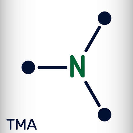 Trimethylamine, TMA molecule. It is amine, methylamine, synthesized by microbial enzymes in gut with involvement of dietary components. Skeletal chemical formula. Vector illustration Vektorové ilustrace
