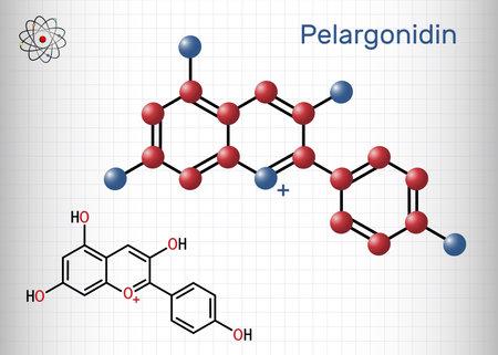 Pelargonidin molecule. It is anthocyanidin cation, plant pigment, orange color. Structural chemical formula and molecule model. Sheet of paper in a cage. Vector illustration Vektorgrafik