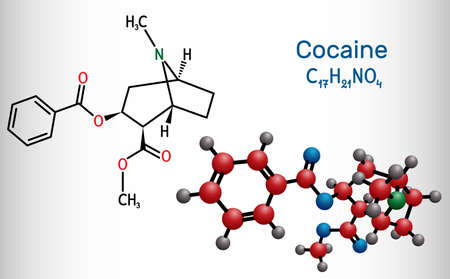 Cocaine, coke, coca molecule. It is tropane alkaloid with central nervous systems CNS stimulating, local anesthetic, vasoconstrictor. Structural chemical formula, molecule model. Vector illustration