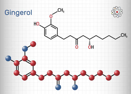 Gingerol molecule. It is phenol phytochemical compound, antineoplastic agent, is found in fresh ginger. Structural chemical formula and molecule model. Sheet of paper in a cage