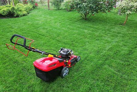 hand-held lawn mower, wireless, on green grass Banco de Imagens