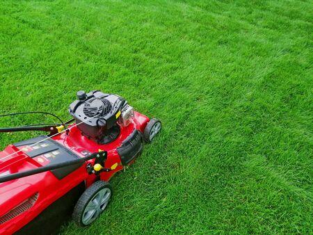 electric grass lawn mower on green grass