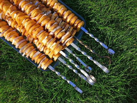skewer with raw potatoes and fat, on a transparent tray on the grass. idea - recipe, picnic