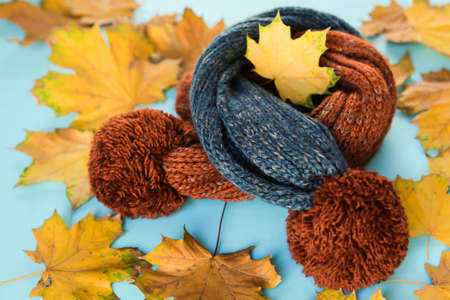 children's scarf and autumn leaves on a blue background Stock Photo