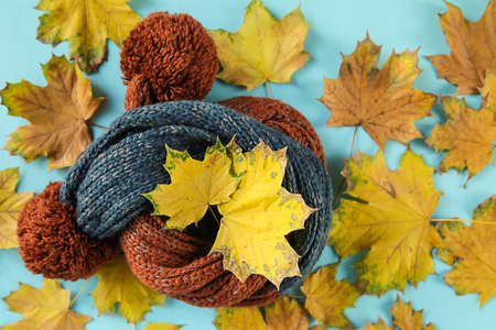 scarf and autumn leaves on a blue background