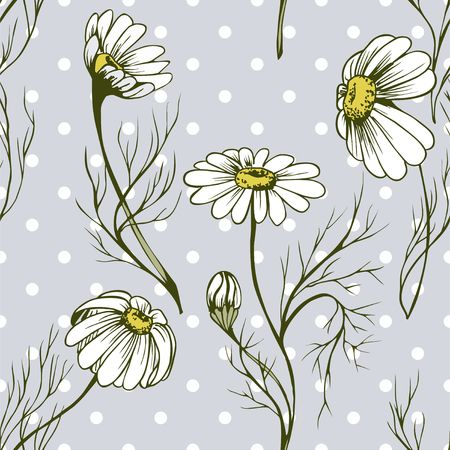 Chamomile flower vector seamlees pattern hand drawn herbal texture on flowered background