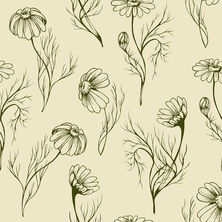 Flor de camomila vector seamlees padrão mão desenhada ervas textura no fundo florido Foto de archivo - 94757824