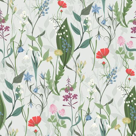 Herbs and Wild Flowers vector seamless pattern of botany texture bdckground illustrations vintage flowes images