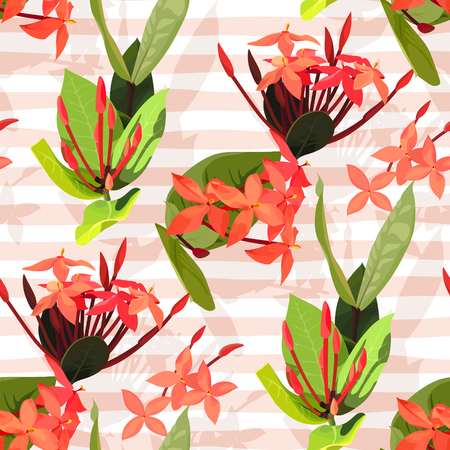 Ixora flowers ector seamless pattern. Flowered texture on a pink stripes backgrounds Vectores