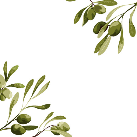 Vector corners with olive tree decoration. Vegan food illustrations