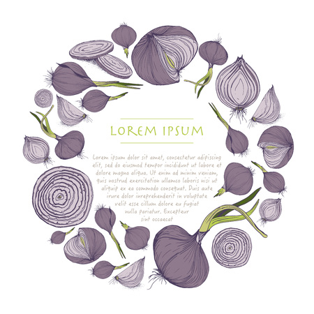 Vector vegetable wreath with purple onions circle template for social media and greeting card Çizim