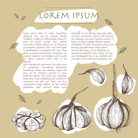 Food background with garlic vegetables Hand drawn white social media template with text Çizim