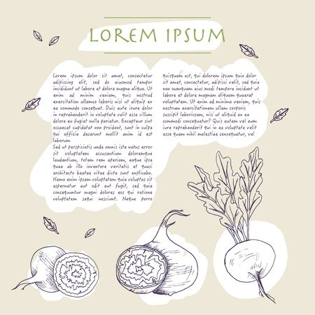 Food background with beetroot vegetable Hand drawn social media template with text and brush strokes