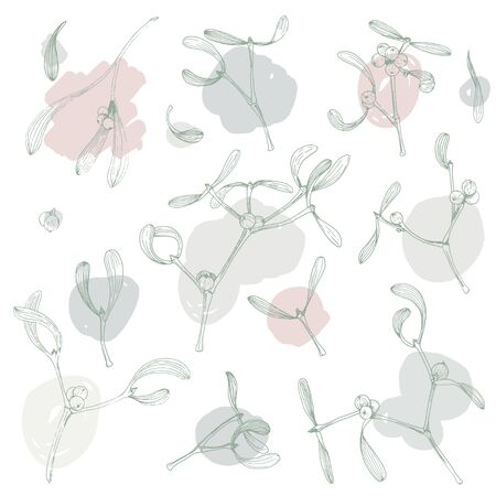 Christmas clip art with mistletoe plant and brush strokes hand drawn botany isolated illustrations