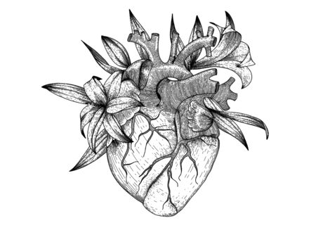 Vector realistic heart with lily flowers . Anatomy human organ image for t-shirt prints Vectores