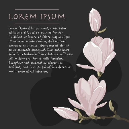 Vector floral dark background with magnolia plant pastel color corner with brush stroke for greeting card
