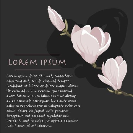 Floral dark grey background with magnolia tree Vector square social media template with text