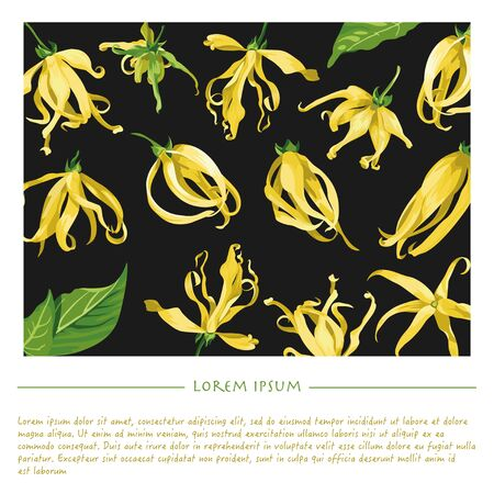 Floral template with ylang ylang for social media publication with black backgrounds Vectores