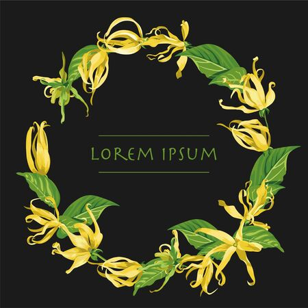 Vector circle wreath with ylang ylang flowers. Floral frame with tropical yellow flowers on a black background Illustration