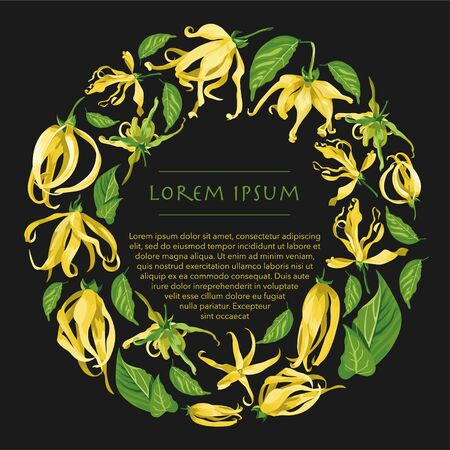 Vector circle wreath with ylang ylang flowers. Floral frame with tropical yellow flowers on a dark grey background