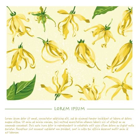 Floral template with ylang ylang for social media publication with yellow background and splash. Vectores