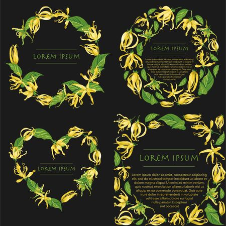 Vector wreath set with ylang ylang flowers. Set of floral illustrations  with wild tropical yellow flowers on black backgrounds