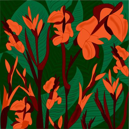 traliche, strawberry tropical plant, orange flowers Illustration