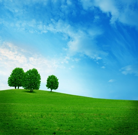 three trees on the green field Stock Photo